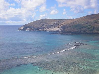 ハワイ画像 445.jpg