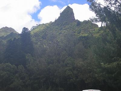 ハワイ画像 478.jpg