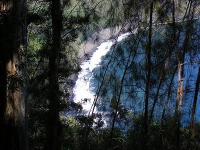 ハワイ画像1 128.jpg