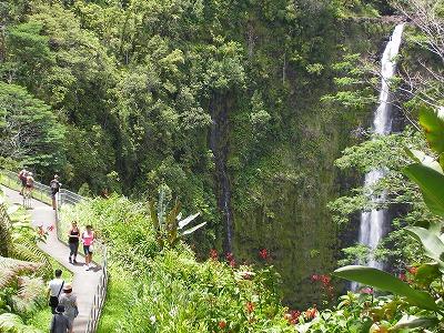 ハワイ画像1 151.jpg