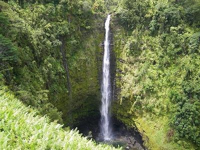 ハワイ画像1 153.jpg