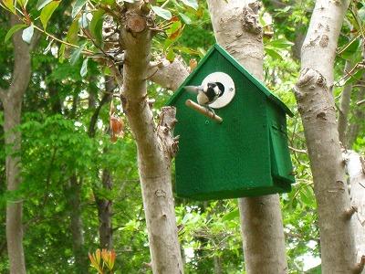 小鳥の巣 144.jpg