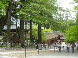 迎木の棚田6.jpg